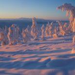 Эксперты рассматривают возможность производства стройматериалов в Якутии